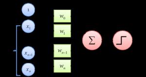 rosenblatt's perceptron